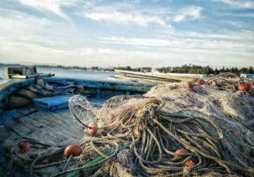 рибарство-новини