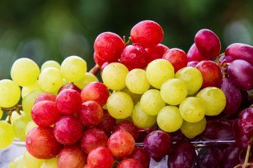 grapes-5889697_960_720